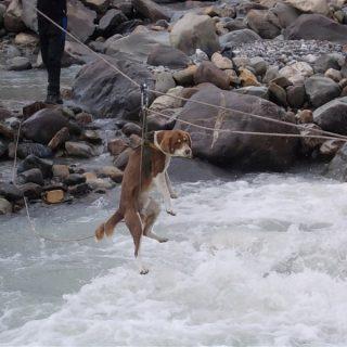 River Crossing at Pin Parvati trek Kullu
