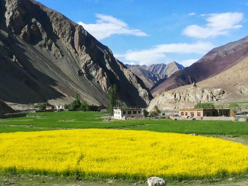 Leh/Ladakh