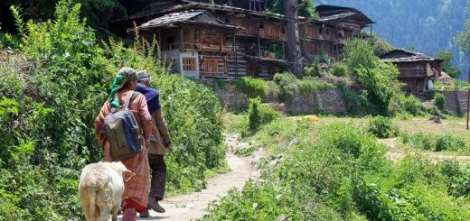 Naggar Rumsu Village and Jana Village